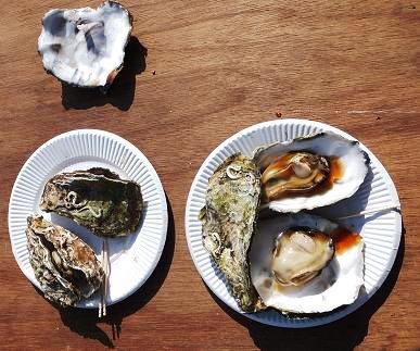宮島牡蠣祭りの 牡蠣せいろ蒸し