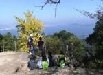弥山の頂上にはイチョウがあります