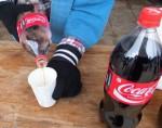 コカ・コーラ 無料です