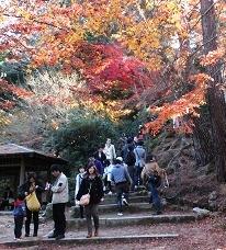 四宮神社付近  階段を上がると山村茶屋