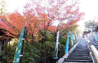 大聖院の階段
