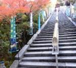 長い階段をあがり
