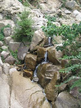白糸川上流