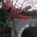 塔の丘のトンネル