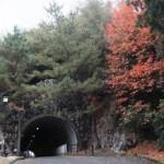 網の浦隧道