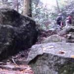 登山道を歩きました