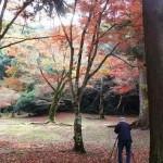 木比屋谷の紅葉3