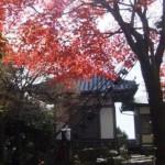 弥山本堂の裏
