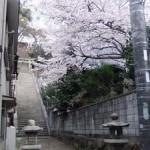 今伊勢神社へ行く階段