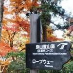 もみじ道2